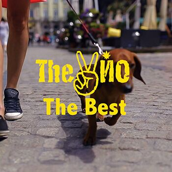 The ВЙО – The Best