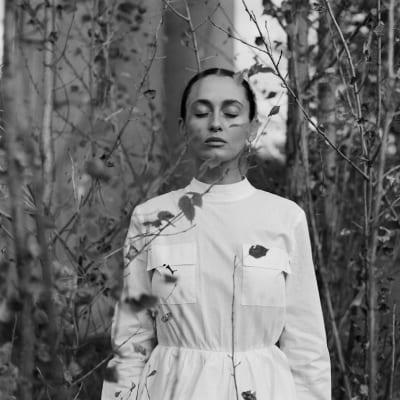 Alina Pash – Pintea (Кліп)