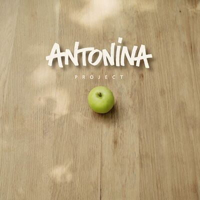 Antonina project – Antonina