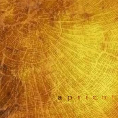 Apricot – Добірка пісень