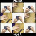 Ptakha – Kryla (Кліп)