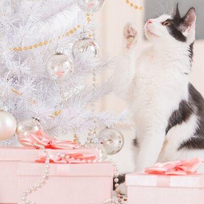 Новорічні та Рiздвянi пісні