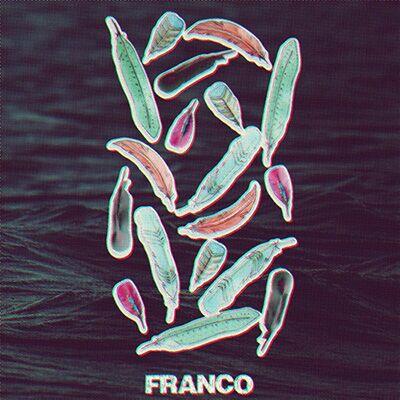 Franco – Птахи